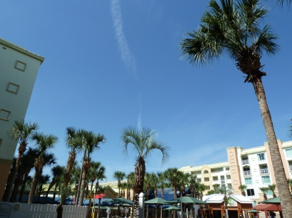 We were surrounded by palm trees! (Not snow!!!) :-)