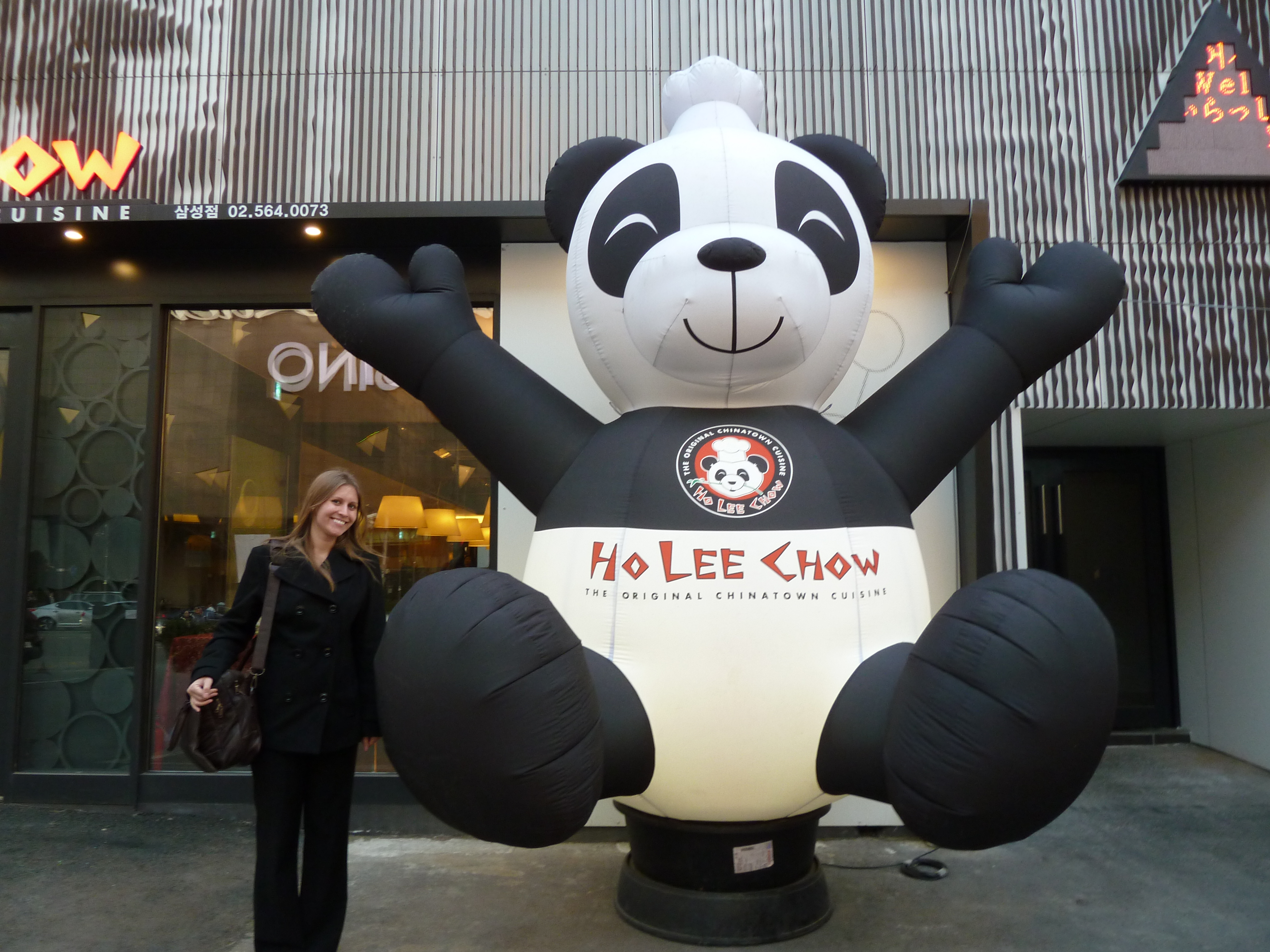 Holy Chow big panda | Allison Merten