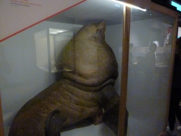 """Field Museum:""""Opening the Vaults: Wonders of the 1893 World's Fair"""" Exhibit"""