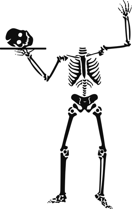 skeleton-151169_960_-720-pixabay